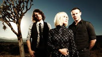 The Joy Formidable at Toads Place - CT