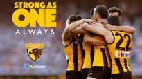 Hawthorn v Western Bulldogs - Centre Wing