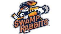 Greenville Swamp Rabbits vs. Wichita Thunder