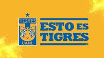 Club Tigres Femenil