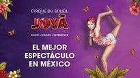 Cirque du Soleil : Joya