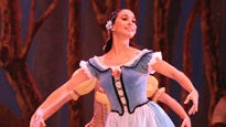 Cuban Classical Ballet Of Miami: The Best Of The Classical Repertoire