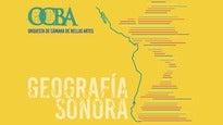 Los Sonidos del Viento. Orquesta de Cámara de B.A. Vera Koulkova.