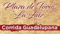 Gran Corrida Guadalupana 2017