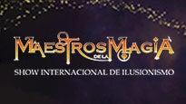 Maestros de la Magia