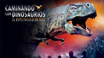 Guia eventos familiares Mexico 3 43573a