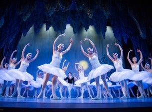 Schwanensee – St. Petersburg Festival Ballet