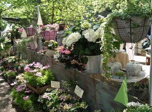 Landpartie – Garten & Ambiente