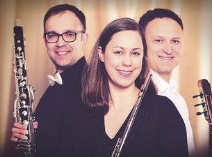 Saitenwind Trio