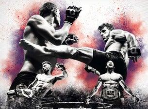 We love MMA – Mixed Martial Arts