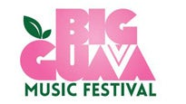 More Info AboutBig Guava Music Festival  3 day pass
