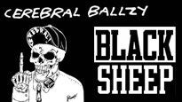 More Info AboutCerebral Ballzy, Black Sheep