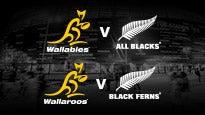 Bledisloe Cup - QANTAS Wallabies v New Zealand