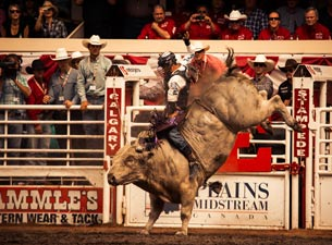 Calgary Stampede Rodeo Tickets