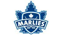 Toronto MarliesTickets