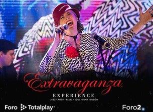 Extravaganza Experience