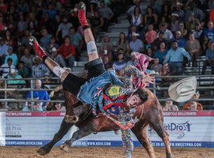 American Freestyle Bullfighting