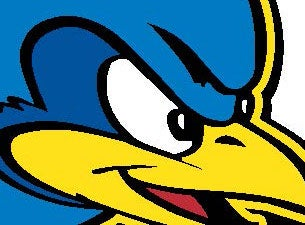 University of Delaware Blue Hens Football Tickets