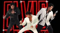 discount password for Chris MacDonald's Memories of Elvis - Live in Concert tickets in Englewood - NJ (Bergen Performing Arts Center)