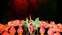 China National Acrobatic Troupe at STEPHENS AUDITORIUM