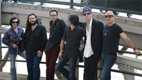 More Info AboutThe Bodeans