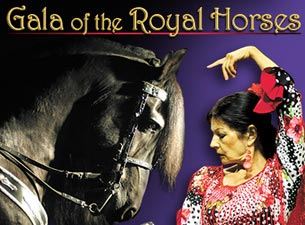Gala of the Royal Horses Tickets