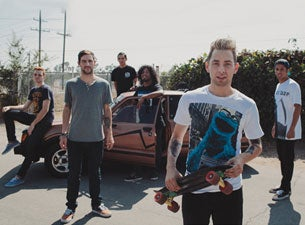 Issues Tickets