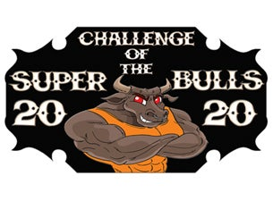 Pro Bull Riding:  Challenge of the Super Bulls