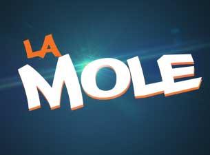"Ivan Fematt ""La Mole"""