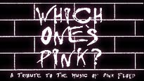 Which One Pink password for concert tickets.