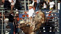 Bull Riding discount offer for event tickets in Costa Mesa, CA (OC Fair and Event Center)