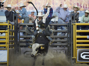 Championship Bull Riding Tickets