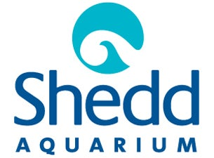 Shedd Aquarium Only Pass Tickets
