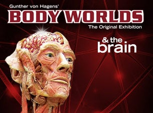 Body Worlds & the Brain Tickets