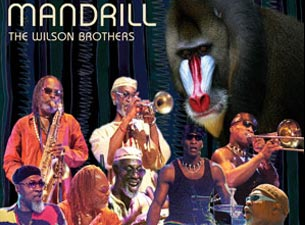 Mandrill Tickets