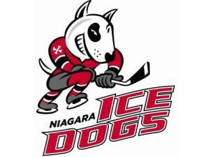 Niagara IceDogs Tickets