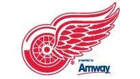 DETROIT RED WINGS VS. NASHVILLE PREDATORS discount code for game tickets in Detroit, MI (Joe Louis Arena)
