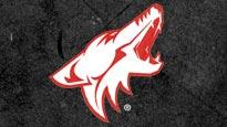 discount password for Phoenix Coyotes vs. Los Angeles Kings tickets in Glendale - AZ (JOBING.COM ARENA)