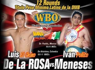 Box profesionalBoletos